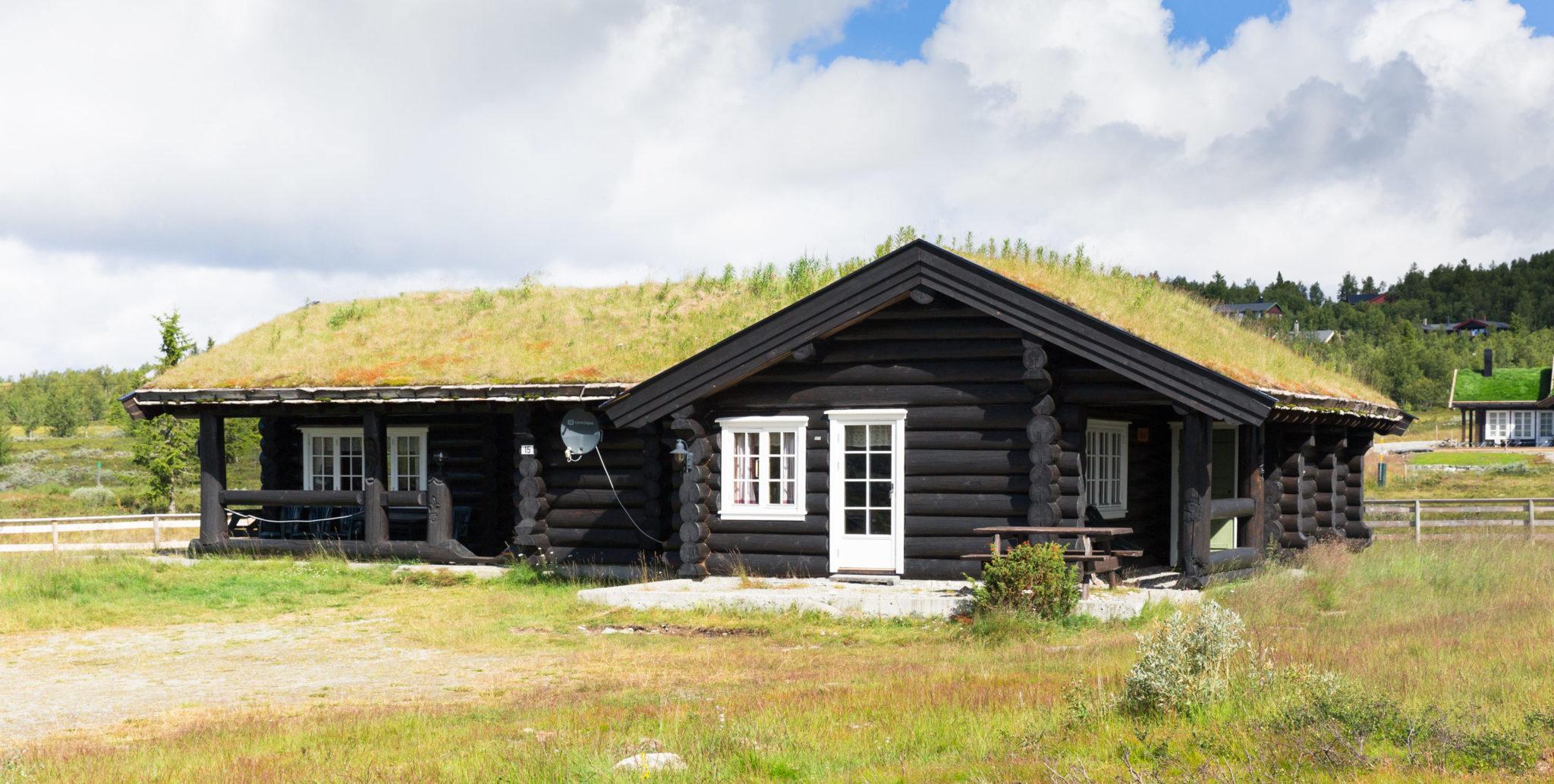Dynjefjell og Svartfjell. Foto: Tøri Gjendal